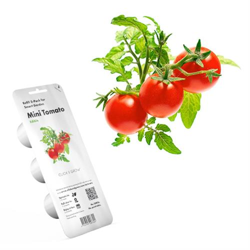 Smart Garden Mini rajčiny PCW-006