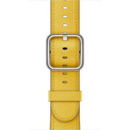 Apple 42mm Sunflower Classic Buckle - S/M & M/L mpx62zm/a