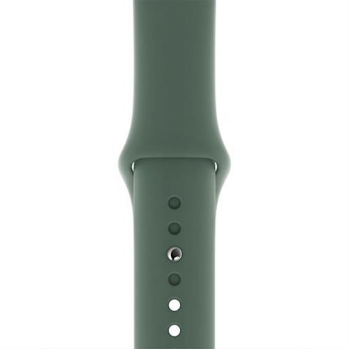 Apple Watch 40mm Pine Green Sport Band - S/M & M/L